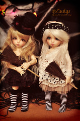 Halloween (Eludys) Tags: halloween rachel doll bjd fairyland ante ltf yosd littlefee