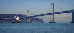 Easterly - San Francisco - 2013 (SJL) Tags: sanfrancisco baybridge sanfranciscobay sailingship scottloftesness fujifilmxe1