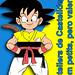 2013 - Goku-Casteller