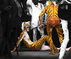 ~Hulivesha Dance during Navratri Festival~ (Sagar Mahadik Photography) Tags: yellow candid expressions culture mumbai folkdance humanbeing traditon navratri indianculture hulivesha tigerdance sagarmahadik