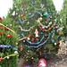 Trees_of_Loop_360_2013_077
