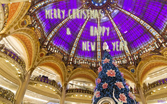 Season's greetings (Raph/D) Tags: christmas new city paris france tree glass colors canon season happy eos store galeries lafayette boulevard haussmann magasin seasons purple year illuminations violet grand best card dome wishes 7d greetings merry wish raphael catchy sapin carte voeux coupole 2014 canoneos7d