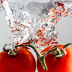 Tomatoes (Snowblind6 Photography) Tags: red white green rot e