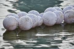 Wishing Spheres (chooyutshing) Tags: public display celebrations marinabay wishingspheres singaporecountdown 20132014 pennedmessages