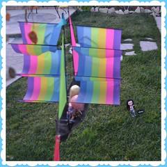 Let's Go Fly a Kite!!!