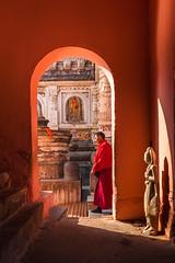 Monk, Bodh Gaya (Marji Lang Photography) Tags: door travel pink light shadow india vertical composition walking temple walk buddha buddhist indian monk buddhism bouddha holy alcove bodhi bouddhisme bihar buddhistmonks buddhistmonk bodhgaya mahabodhi travelphotography bodhitree republicofindia ef247028l indiansubcontinent mahabodhitemple भारतगणराज्य canoneos5dmarkii bhārat bhāratgaṇarājya travelanddocumentaryphotography ভারত marjilang mahabodhimahaviharatemple