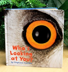 Who's Looking at You? (Vernon Barford School Library) Tags: new school bird eye nature birds animal animals photography reading book photo high eyes looking you library libraries wildlife board reads books photographic read cover junior covers bookcover middle vernon quick flap recent qr stphane bookcovers whos nonfiction pictorial fact flaps hardcover wordless barford liftup factual frattini quickreads quickread vernonbarford pictorialworks lifttheflap animalidentification moveablebook superquickpicks paperoverboard 9781402779817