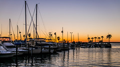 Dunedin Harbor (mutrock) Tags: sunset usa sun boats harbor unitedstates florida harbour dunedin fl yachts sailboats 2014 dunedinharbor