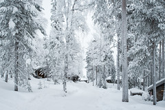 Salla (jmhuttun) Tags: show winter snow finland europe lapland d800 salla