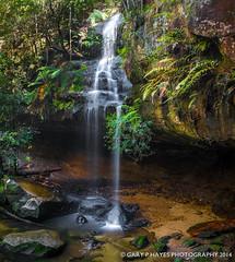 Horsehoe Falls 01 (Gary Hayes) Tags: waterfall australia bluemountains hazelbrook horseshoefalls oaklandfalls