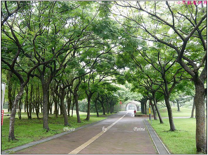 大溪埔頂公園 (10).JPG