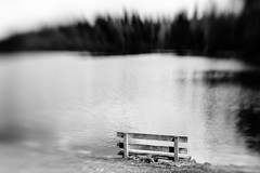 Let's Take A Seat And Listen To Nature (John Westrock) Tags: blackandwhite bw lake blur nature water monochrome lensbaby canon bench pacificnorthwest pnw canoneos5dmarkiii