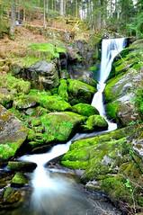 DSC_0714 (Davide Ragusa) Tags: park motion black blur water germany nikon forrest waterfalls davide schwarzwald triberg ragusa cascate triberger d90 wasserflle davideragusa