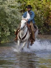 Joel IMG_6319 (blackhawk32) Tags: autumn horses horse cowboy shell wranglers wyoming rivercrossing wy wrangler shellwyoming hideoutlodge