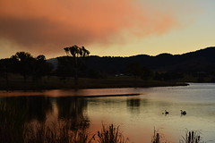 Red smoke (Luke6876) Tags: trees sunset water dam smoke burnoff tenterfield