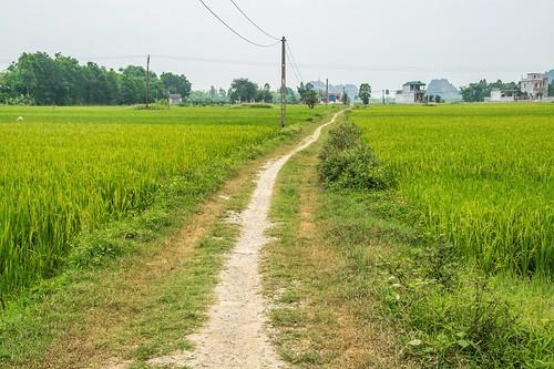 tam coc - vietnam 54