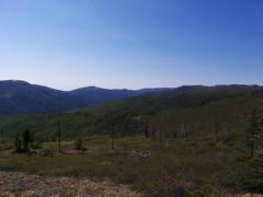 Chena Dome (7) (Alyosha K) Tags: alaska hike