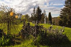 cementry at Day (Housetier84) Tags: old friedhof green grave fence germany deutschland alt jesus used grn grab zaun harz runtergekommen cementi benutzt