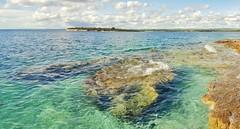 Sea shore (mihael29) Tags: beach nature beautiful stone clouds swim island europe wildlife gorgeous croatia shore popular adriatic istria tbt puntiela like4like