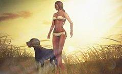 Tropical summer heatwave (Alexa M.) Tags: woman pets dogs outdoors secondlife poses reel codex beachwear 3dtrees izzies elikatira kiddcreations {jas} tropicalsummerfair