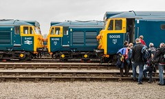 Renewing old acquaintances (Nodding Pig) Tags: uk greatbritain england bristol railway depot locomotive arkroyal hercules fearless openday 2016 englishelectric class50 type4 dieselelectric 50007 d407 50035 50050 stphilipsmarsh 201605022605101crop