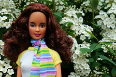 School Cool Teresa (Emily-Noiret) Tags: flowers school green spring cool doll teresa mattel