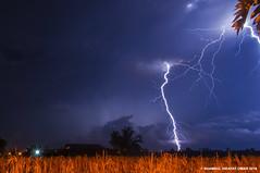 June 19 2016 Lightning (Shamsul Hidayat Omar) Tags: tourism weather photography nikon paddy malaysia lightning omar selangor tanjung karang hidayat d90 kilat shamsul
