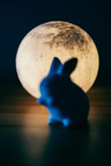 The Moon (ViktorLeung) Tags: moon rabbit night light