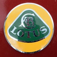 Lotus, Elise (Royaume-Uni, Series 1, 1996 - 2001) (Cletus Awreetus) Tags: car sport emblem logo automobile lotus elise unitedkingdom voiture collection badge gb royaumeuni grandebretagne voituredesport emblme