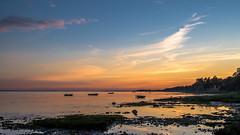 Gulf of Finland (pilot3ddd) Tags: stpetersburg gulfoffinland lisiynos sunset balticsea boats olympuspenepl7 panasoniclumixg20mmf17 diamondclassphotographer