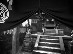 Fox Tassel (RunnyInHongKong) Tags: film japan mediumformat tokyo 6x45 kodaktmax400 nezu mamiya645protl nikoncoolscan9000 mamiyasekor80mmf19 nikonscan41