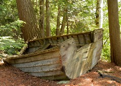 sailing the forest (cantalesa) Tags: oldboat abandonedboat woodboat