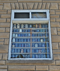 Collection (Krissy-Anne ♫) Tags: building window glass glasses antique mug stein