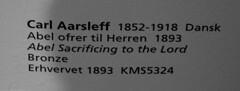 Kbenhavn, Sjlland, Statens Museum for Kunst, Abel makes a sacrifice / Carl Aarslef {1893} (groenling) Tags: boy shirtless bronze copenhagen nude denmark dk abel danmark ngen kbenhavn sacrifice statensmuseumforkunst sjlland dreng naken aarself kms5324