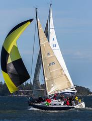 Blux ja Tyyne (Antti Tassberg) Tags: sea cup race espoo suomi boat sailing yacht sail regatta meri kes vene sailingboat whc westhouse purjevene purjehdus purje mellsten haukilahti spinaakkeri blux
