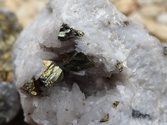 Gem 2 (Tom@125) Tags: old summer stone garden spring rainy precious million years gem