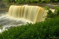 Upper Tahquamenon Falls (2016-06-15 0978) (bechtelsf) Tags: green water outdoors waterfall nikon michigan upperpeninsula tahquamenonfalls tannin d810