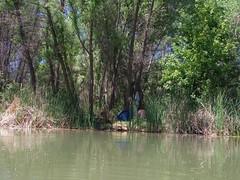 Wee muddy beach (EllenJo) Tags: pentax cottonwoodarizona 2016 june19 jailtrail 86326 ellenjo ellenjoroberts pentaxqs1