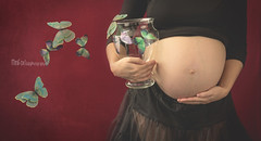Alba (Lilia Pereira PH) Tags: flowers love women pregnancy maternity beautifull pancita maternidad pregnancystyle