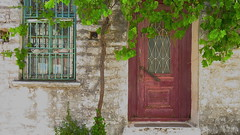 Samos,GR ( doro 51 ) Tags: door window metal facade fenster grapes gr metall samos fassade trauben tre 2016 dorophoto