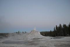 Castle Geyser, Yellowstone National Park (David A's Photos) Tags: park castle national yellowstonenationalpark yellowstone geyser minor eruption yellowstonetrip uppergeyserbasin june2016