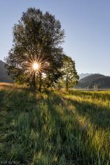 Geroldsee impressions (MC-80) Tags: geroldsee gerold krn karwendel see lake bayern bavaria germany
