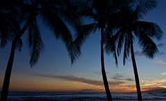 Waikiki Sunset (setoboonhong ( on and off )) Tags: world travel trees sunset sea beach nature wonderful landscape hawaii israel rainbow twilight holidays mood colours ukulele waikiki oahu coconut outdoor song over relaxing silhouettes what honolulu somewhere medley kamakawiwoole