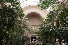 more garden (artburp) Tags: plants architecture cherub musuem