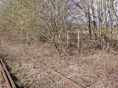 Bescot in 2007 (Paul - Bevan) Tags: bescot ews network south staffs rail grand union m6 motorway concrete structure columns steel i beams girders railway track river tame seven trent sewage treatment works land ex water curve station sidings buildings signals crossing disused abandoned