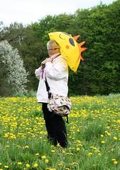 Gute Laune Schirm... (   flickrsprotte  ) Tags: wiese lwenzahn vatertag himmelfahrt flickrsprotte gutelauneschirm