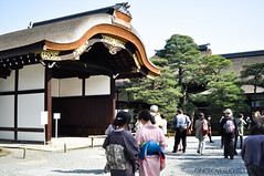 Kyoto #2: The Imperial Palace (OnceOverLightly) Tags: travel history japan architecture kyoto culture palace imperial sakura