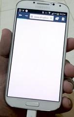 Samsung Galaxy S4 in Palm