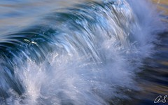 Cellophane (Heatwaves Australia) Tags: blur colour beach water bondi sydney wave australia spl aaa waterhousing