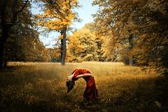 wayfarer II (laura zalenga) Tags: park light red woman sun tree girl field grass yellow forest self dark dress bow wayfarer laurazalenga